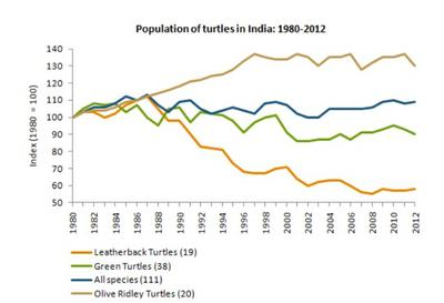 The graph shows the population of turtles in India from 1980 to 2012